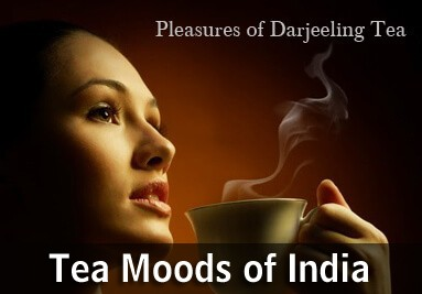 Tea Moods of India
